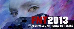 FNT2013